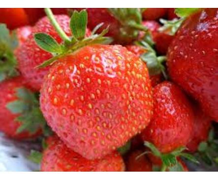 Дългъчев Сладко от ягоди 260 г
